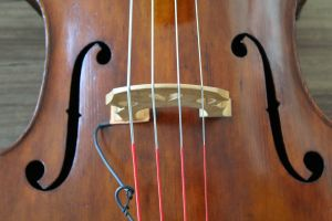 130 German double bass